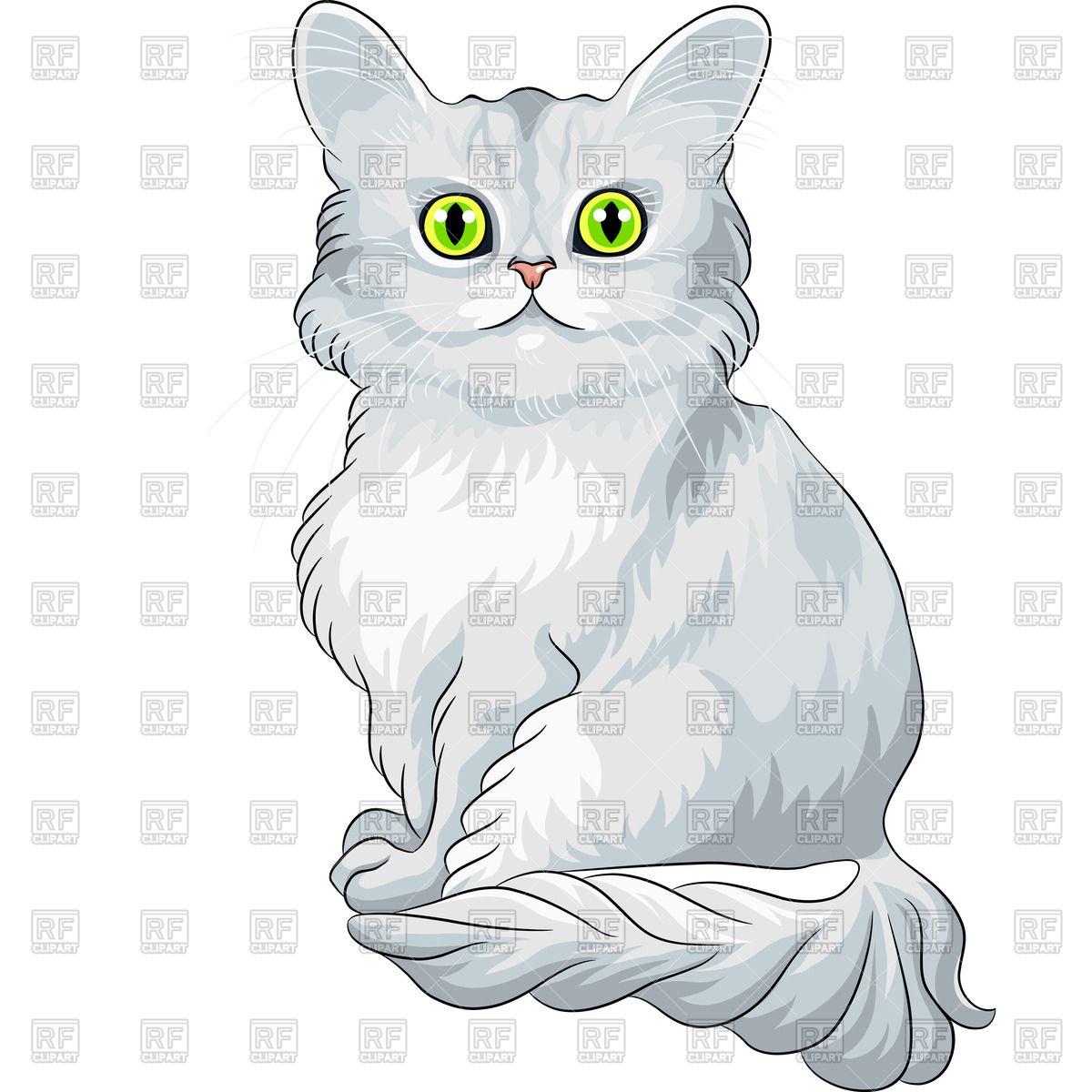 Asian Semi-longhair Cat: Asian Fluffy Asian Semi Longhair Cat Tiffany With Green Eyes Sitting Vector Clipart Breed