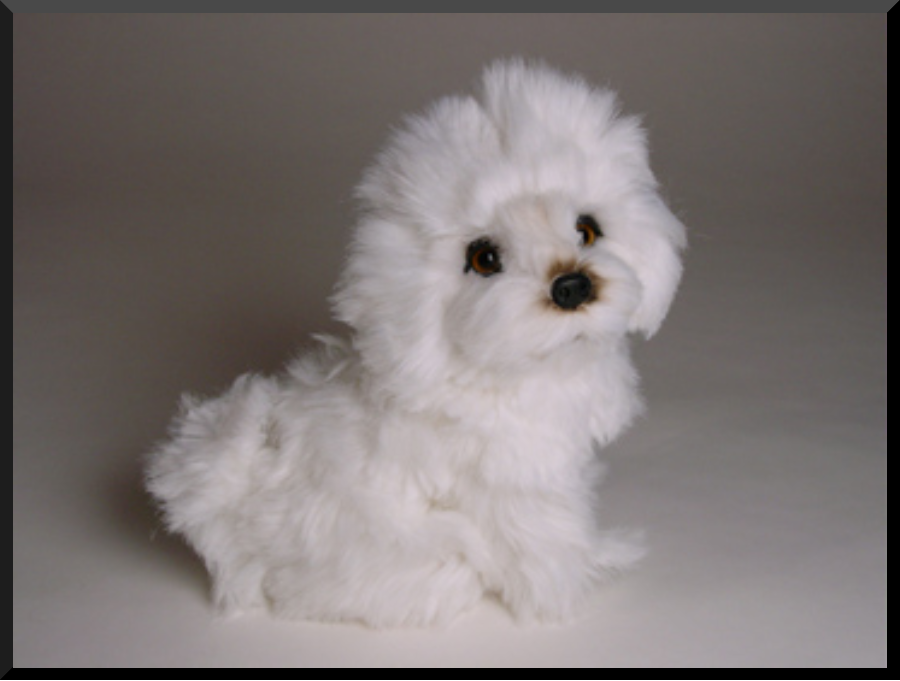 Bolognese Dog: Bolognese Ghita Bolognese Luxury Stuffed Plush Dog Piutre Breed