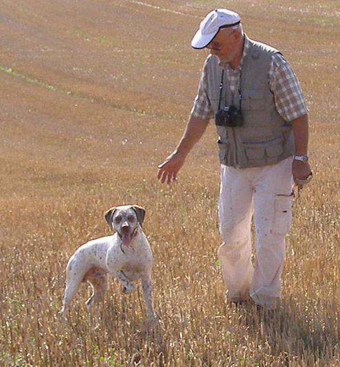Braque du Bourbonnais Dog: Braque Braquedubourbonnais Breed