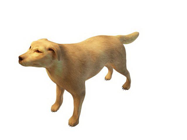 Broholmer Dog: Broholmer Model Breed