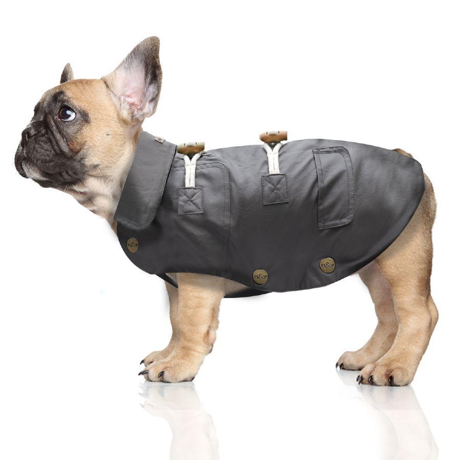 Chien-gris Dog: Chien Gris Impermeable Gris En Coton Pour Chien Cx Breed