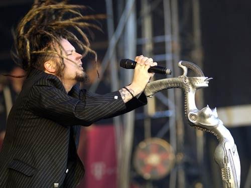 Korn Ja Cat: Korn Jack Breed