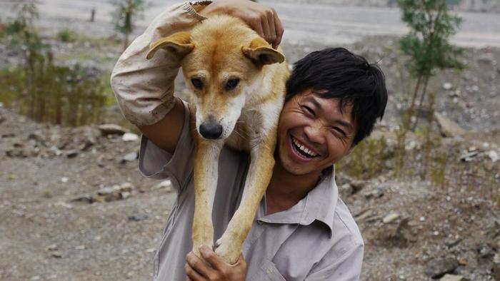 Kunming Wolfdog Puppies: Kunming Kunming Dog Dccfcfb Breed