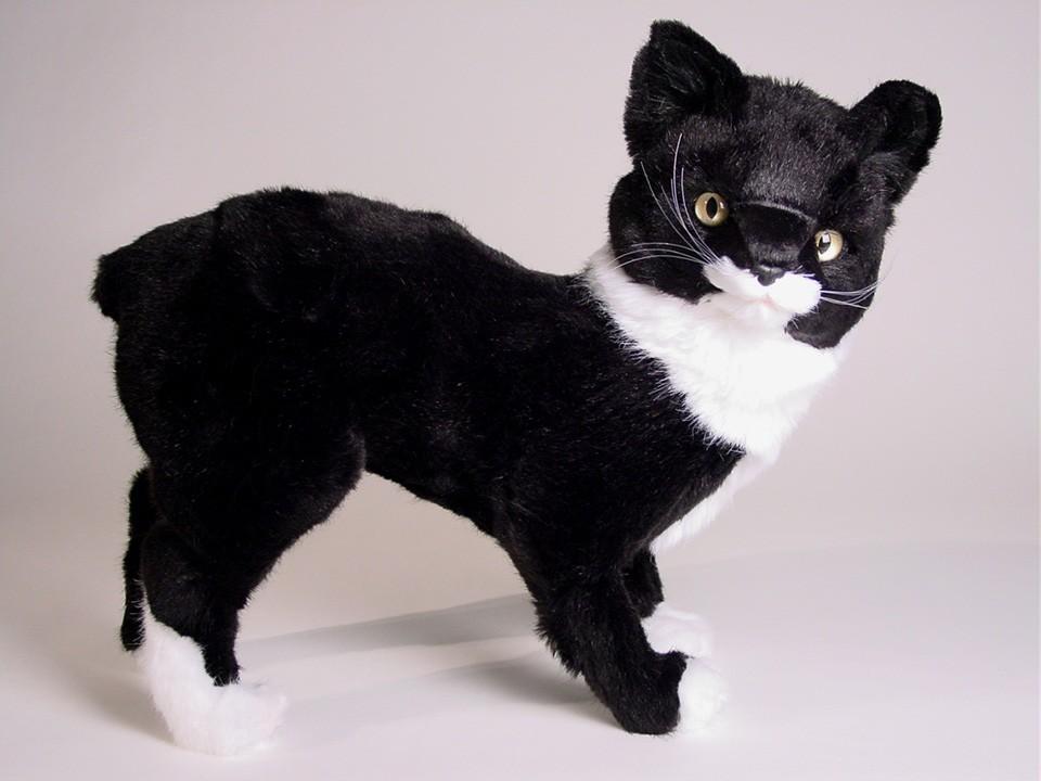 Manx Cat: Manx Manx Cat Plush Stuffed Soft Piutre Handmade Italy Breed
