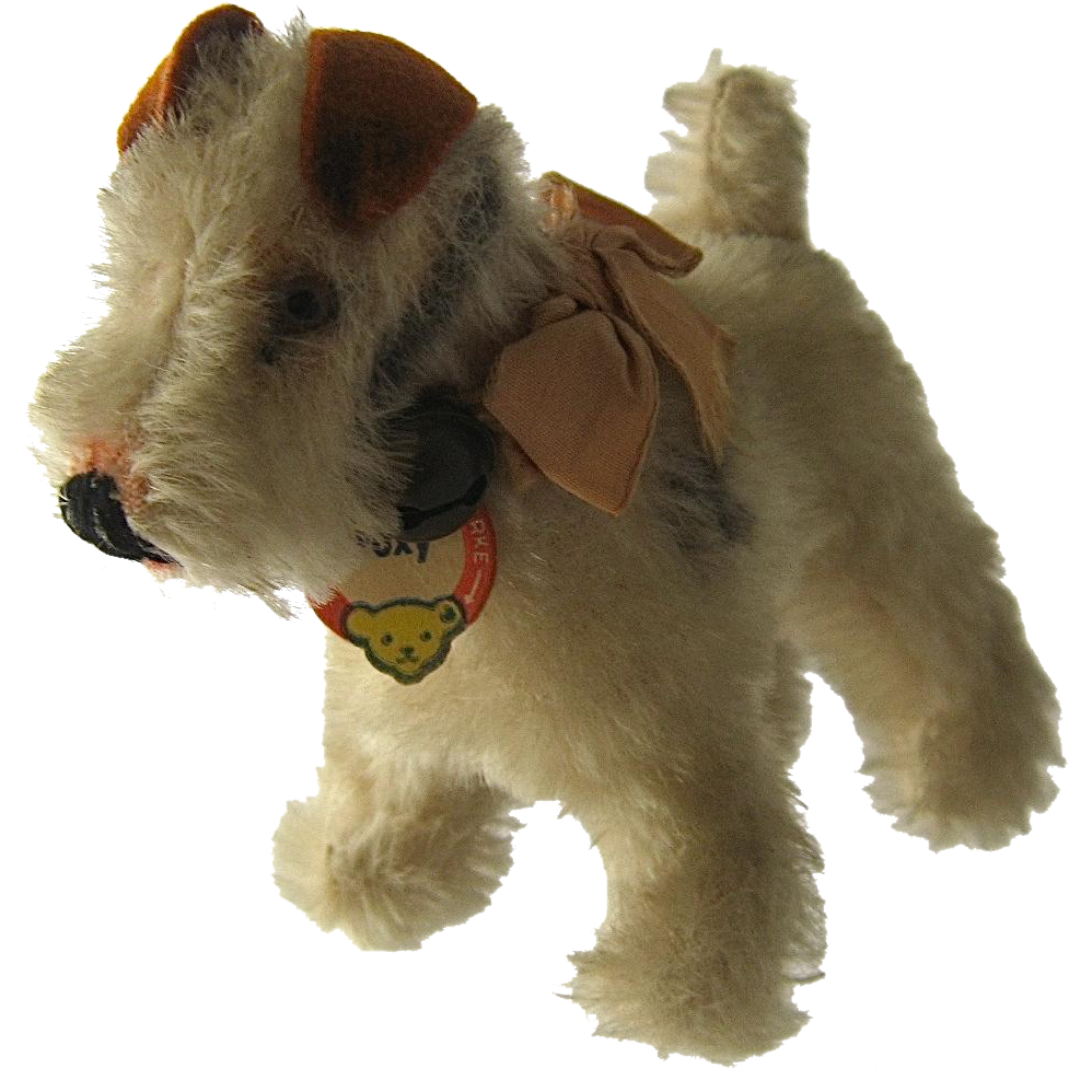 Miniature Fox Terrier Dog: Miniature Steiff Miniature Xfoxyx Fox Terrier Breed