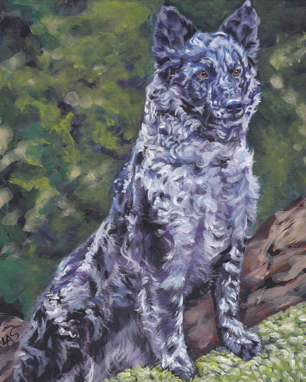 Mudi Dog: Mudi Drawn Mudi Dog Picture Breed