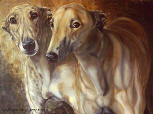 Rampur Greyhound Puppies: Rampur Drawn Rampur Greyhound Dogs Pic Breed