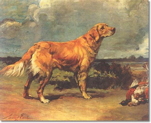 Russian tracker Puppies: Russian Golden Retriever By Maud Earl Breed