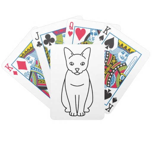Sam Sawet Cat: Sam Samsawetcatcartoonbicycleplayingcards Breed