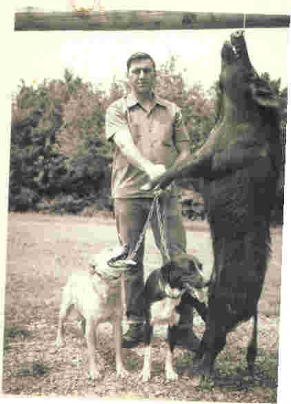 Stephens Cur Dog: Stephens Breed