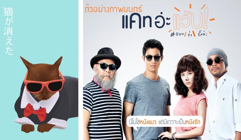 Suphalak Cat: Suphalak Johnny Superstar Cat Thailand Bangkok Own Bank Account Breed