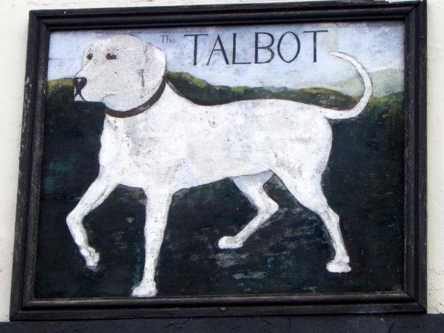 Talbot Dog: Talbot Talbot Dog Pic Breed
