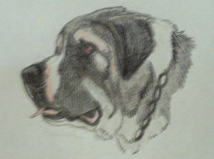 Terceira Mastiff Dog: Terceira Cane Garouf Breed