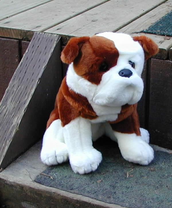 Toy Bulldog Dog: Toy Stuffed Toy Bulldog Breed