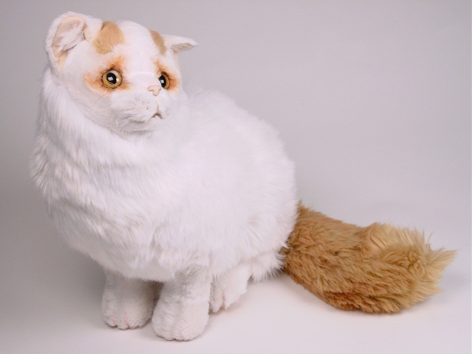 Turkish Van Cat: Turkish Turkish Van Cat Plush Stuffed Soft Piutre Handmade Italy Breed