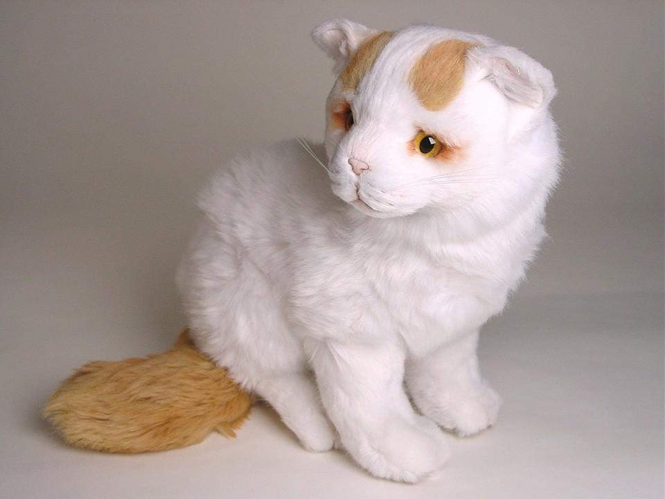 Turkish Van Cat: Turkish Turkish Van Kitten Plush Stuffed Soft Piutre Handmade Italy Breed