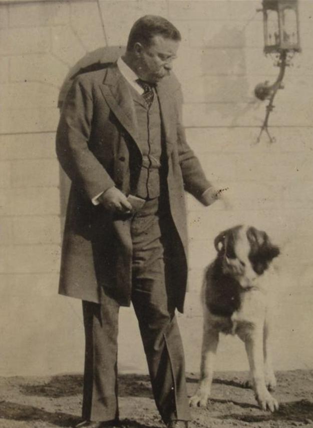 Teddy Roosevelt Terrier Dog: Whitehousepets Breed